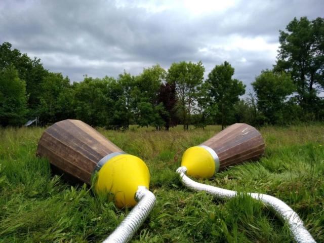 Les cônes de la Murmureuse