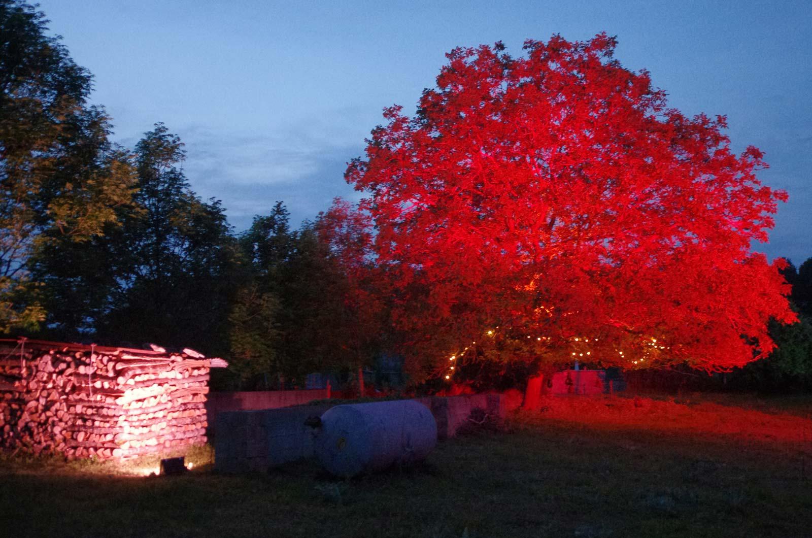 Les illuminations de Cigogne en fête s'associent pour mettre en valeur le site de forage