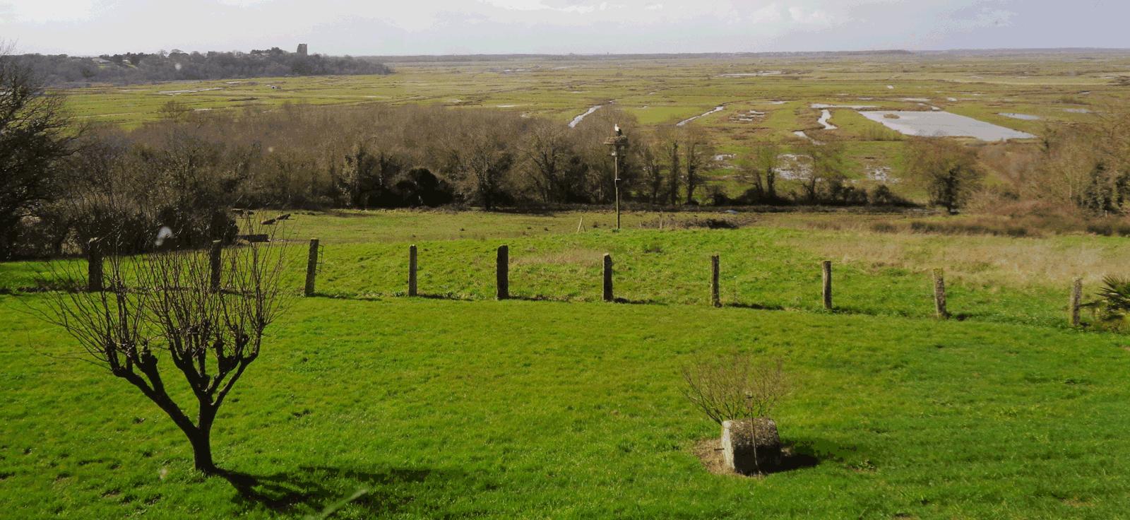 Vue sur le marais de Broue (le Donjon de Broue est visible à gauche)